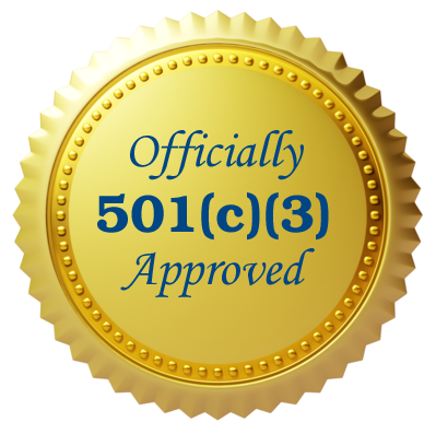 501c3